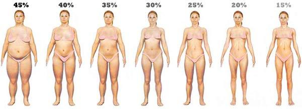 Weight_Loss_Women_Body_Fat_Percentage.jpg